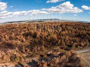 Vertical Landscapes - Aerial Photography - AGRICULTURE AND ENVIRONMENT (forest fire)