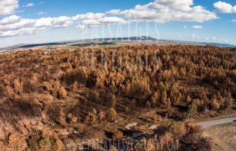Paisajes Verticales - Fotografía aérea - AGRICULTURA Y MEDIO AMBIENTE (Incendio forestal)