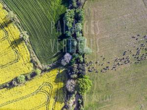 Vertical Landscapes - Aerial Photography - AGRICULTURE AND ENVIRONMENT