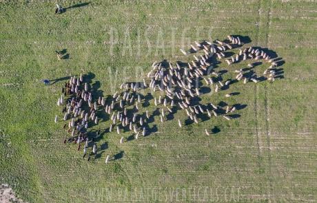 Paisajes Verticales - Fotografía aérea - AGRICULTURA Y MEDIO AMBIENTE