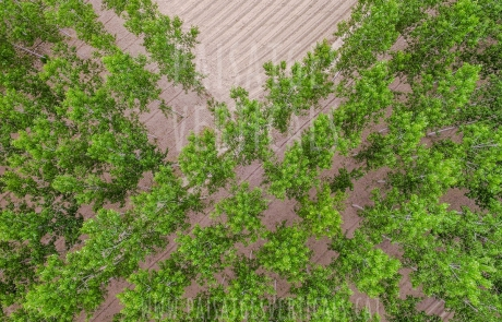 Paisajes Verticales – Fotografía aérea – AGRICULTURA Y MEDIO AMBIENTE